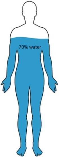 Het lichaam bestaat voor 70 procent uit water.